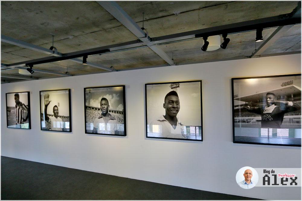 fotos-museu-pele-santos-sp