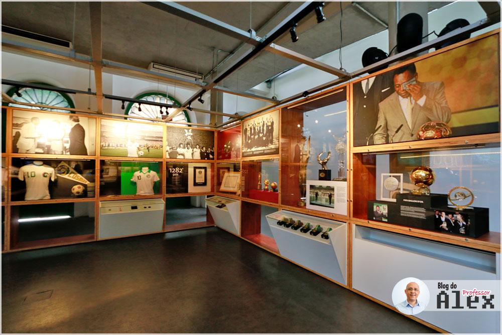 museu-pele-terreo