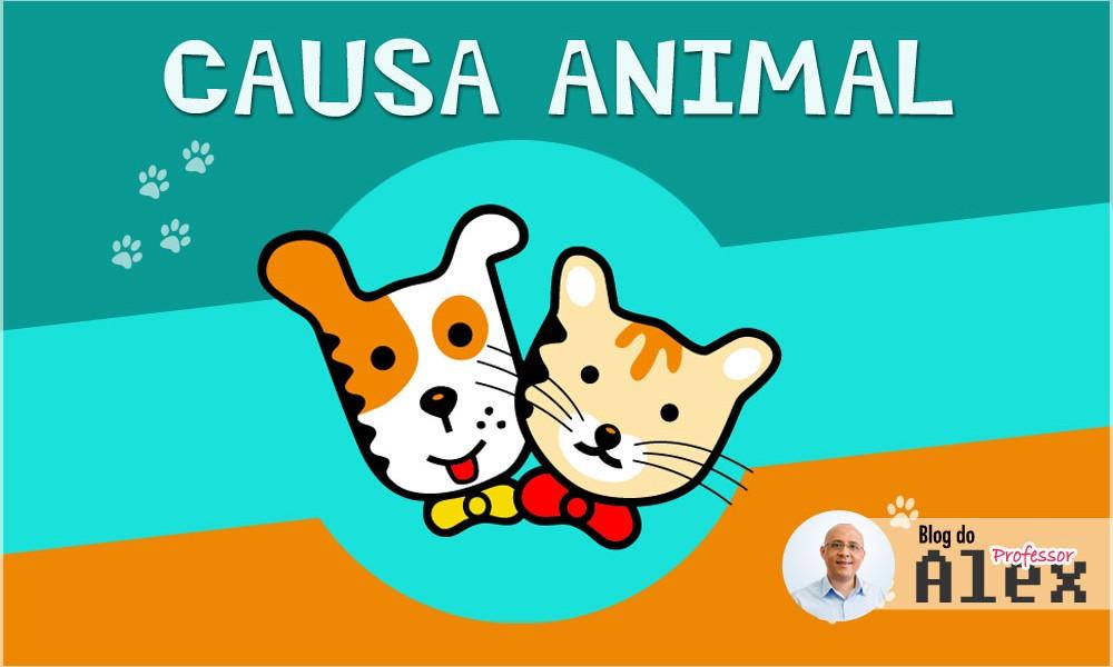 causa-animal-adocao-respeito-aos-animais-posse-responsavel-mongagua