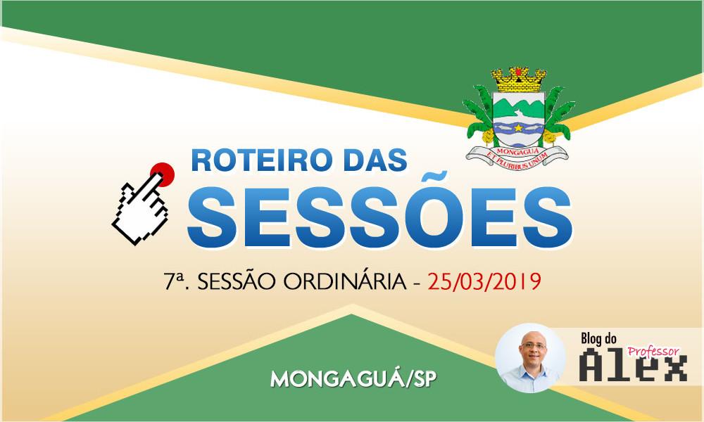 camara-mongagua-roteiro-sessao-25-03-2019
